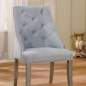 Diocles Silver Gray Table Chair(2PK)